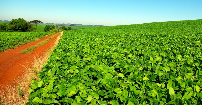 Northern Ghana records significant agricultural improvement due to USAID Agriculture Technology