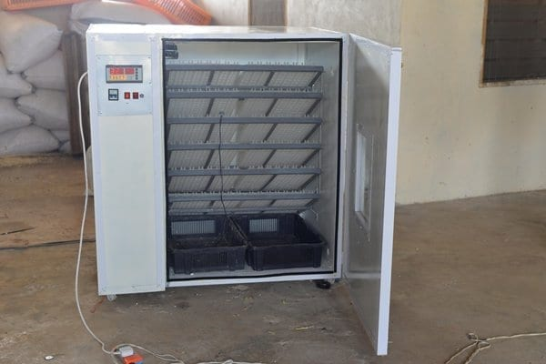 KNUST Teaching Assistant builds affordable 600 capacity fully automated incubators for hatching chicks, with hatching percentage of over 80%