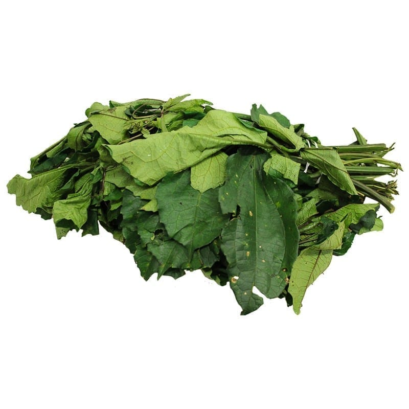 Why you need Ugu in your daily diet