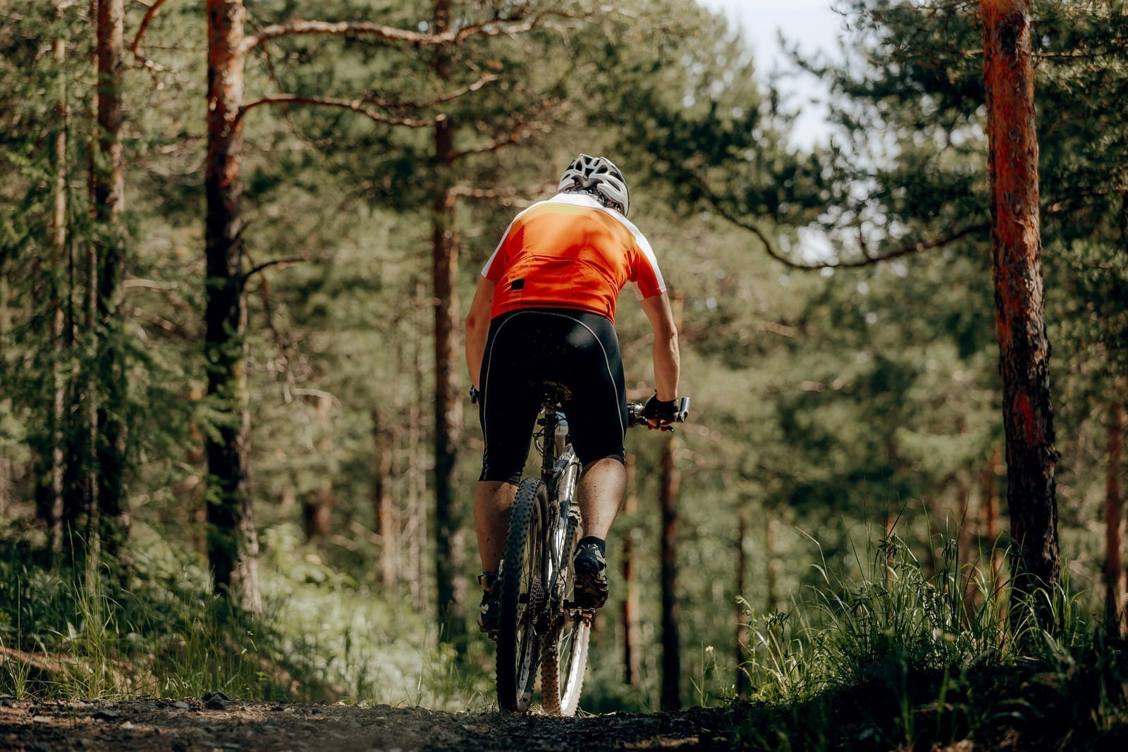 Best Hollywood bike trails for beginners