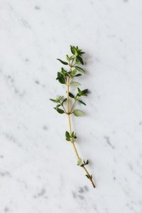 natural herbs that help your sex drive