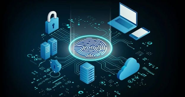 What are the different types of network security?